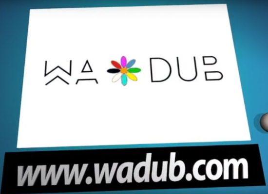 WADUB Librojuegos